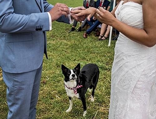 Marlou & Maico, thuis trouwen in Dreumel