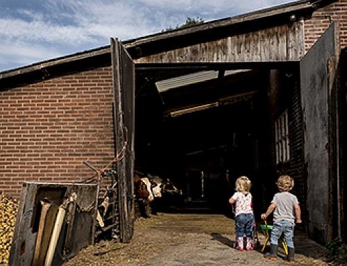 Day in the Life, op de boerderij